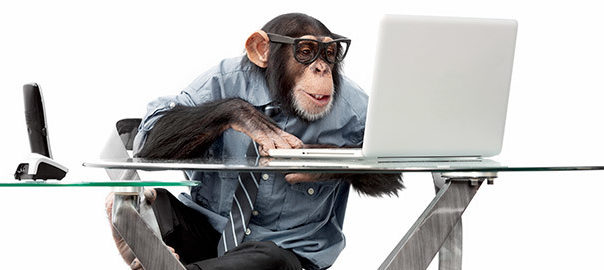 Tech monkey at work setting up our booking calendar